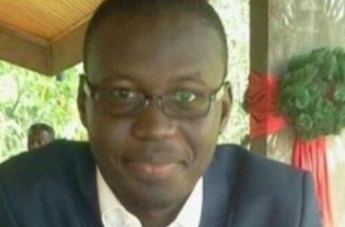 Article : Quelle démocratie pour un Tchad pluriel? (Deuxième Partie)