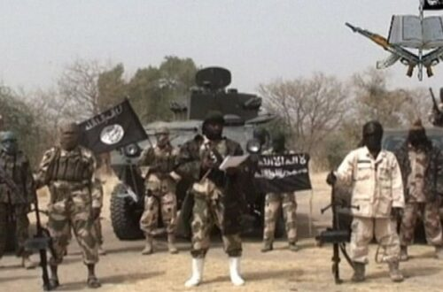 Article : Interview: l'impact de la guerre contre Boko Haram sur la population locale