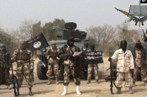 Article : Interview: l'impact de la guerre contre Boko Haram sur la population locale