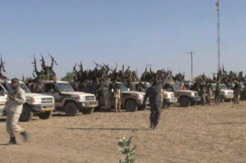 Article : Les militaires tchadiens: héros au Nigeria, terroriste au Tchad