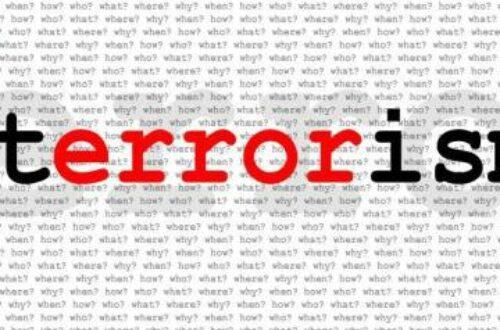 Article : Les quatre modèles du terrorisme Internationale