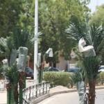 Ndjamena : une ville 100 % bio… ou presque