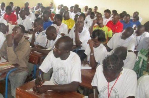 Article : Tchad: Du village au bureau, des études au chomage