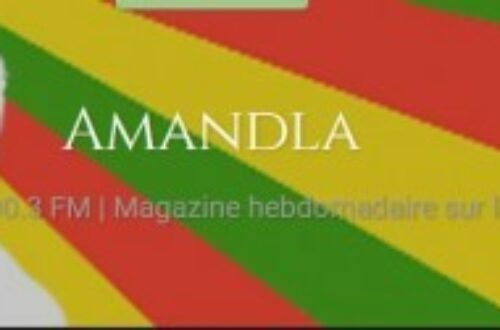 Article : Interview: Présidentielle du 10 avril au Tchad- Radio Amandla
