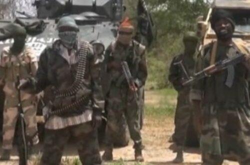 Article : » La branche de l'Etat islamique en Afrique revendique la destruction du pipeline Tchad-cameroun»
