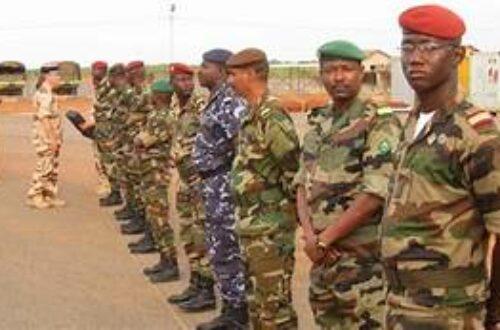 Article : Que font les officiers dans les armées en Afrique?